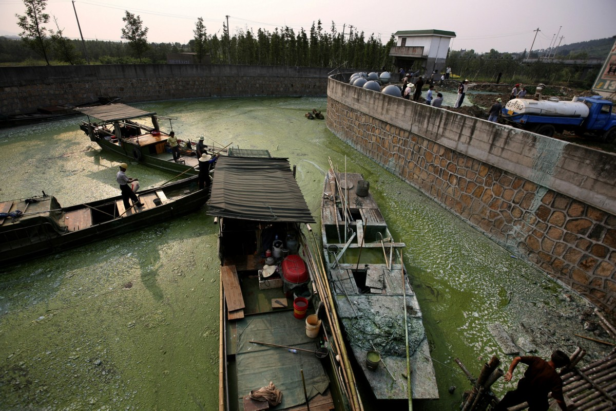 A Lake in Crisis
