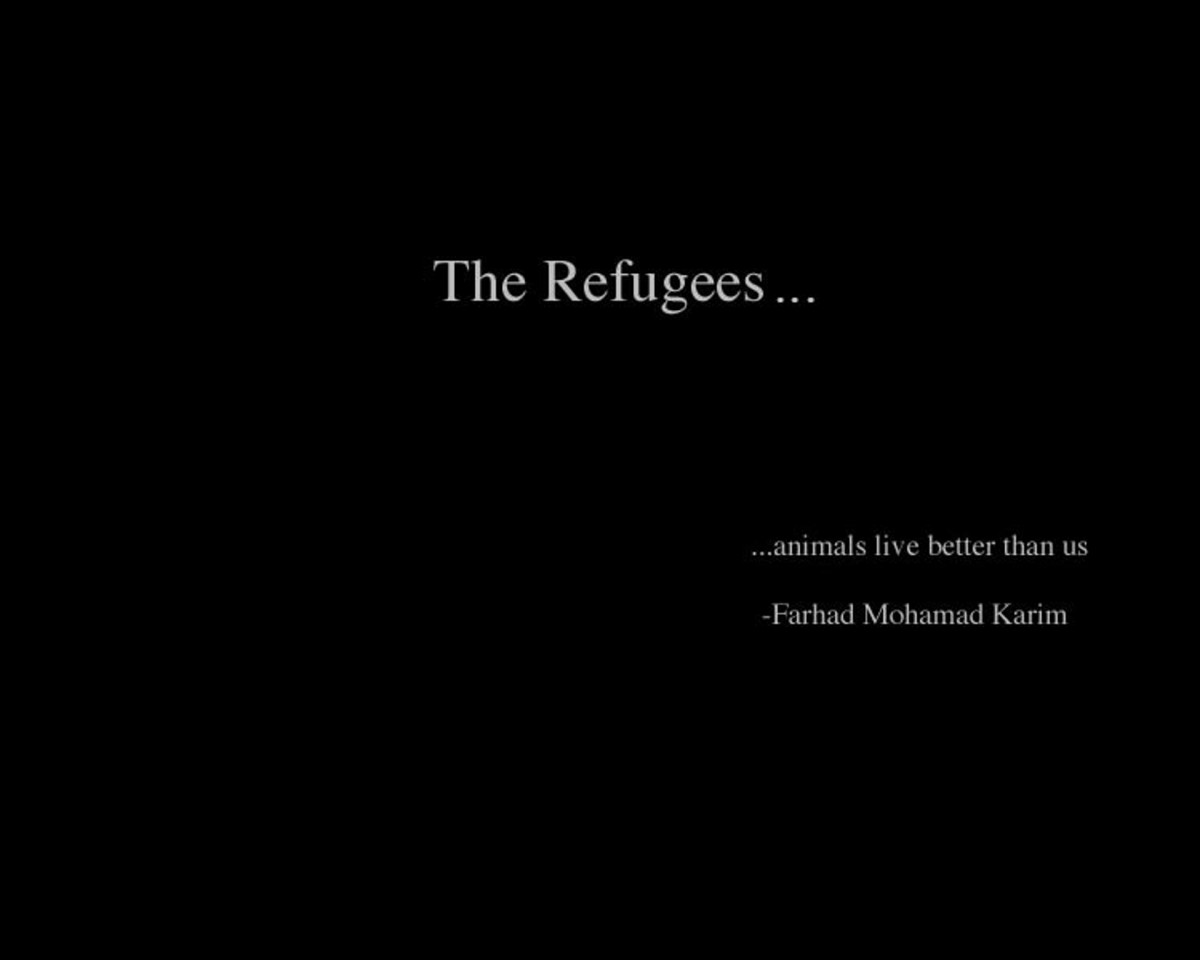 Refugee of Arabization